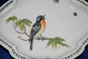 My Bird Painting for my American Friend