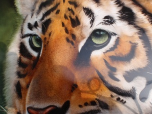 A Tiger painted with Filipe
