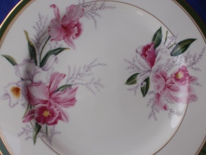 My Camellia Plate with a European Style
