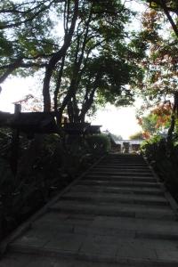Camino Real Sumiya Hotel