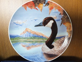 My Canada Goose Painting