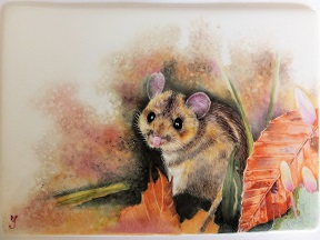 animal painting, American style, Porcelain painting